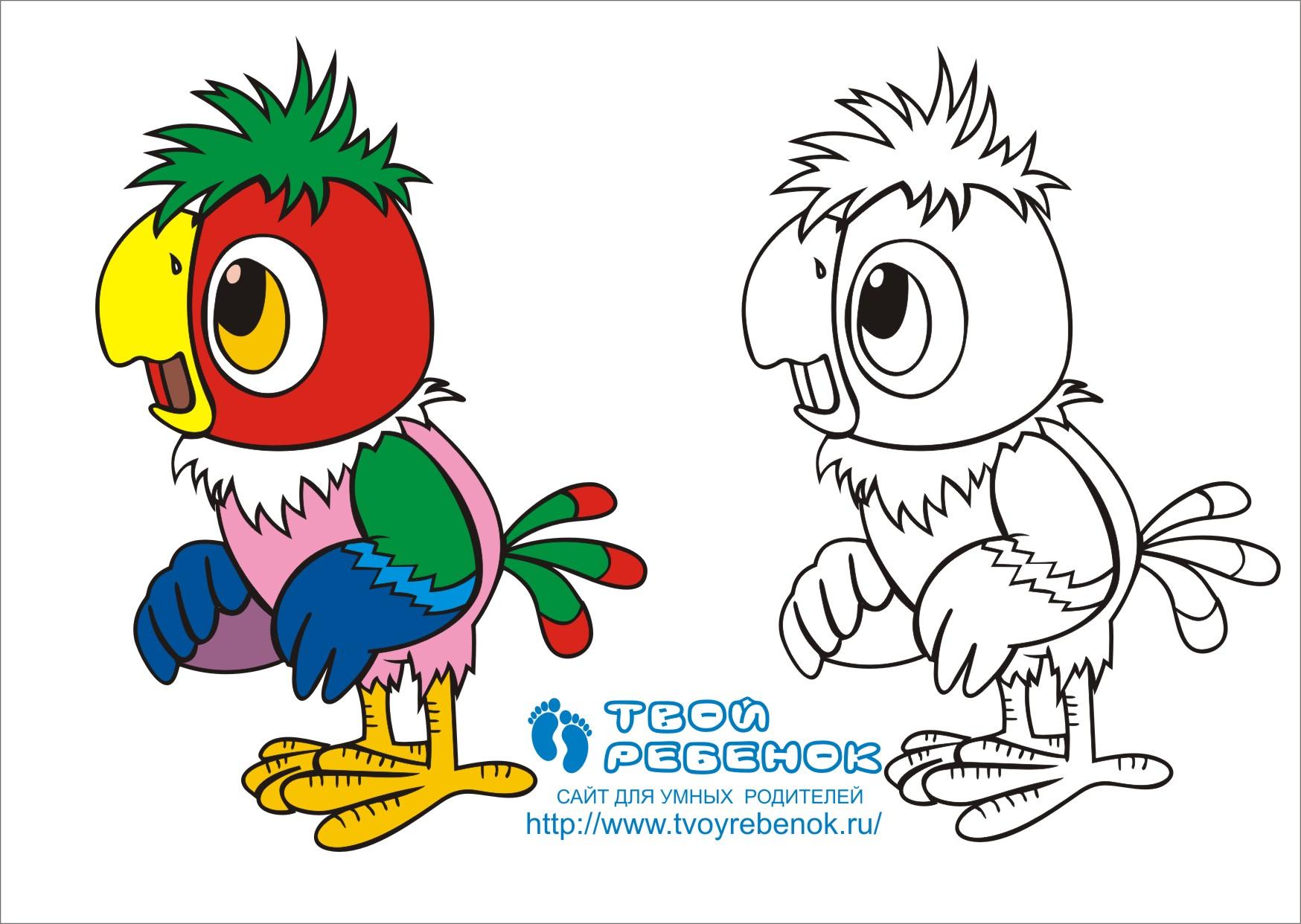 Попугай кеша рисованный