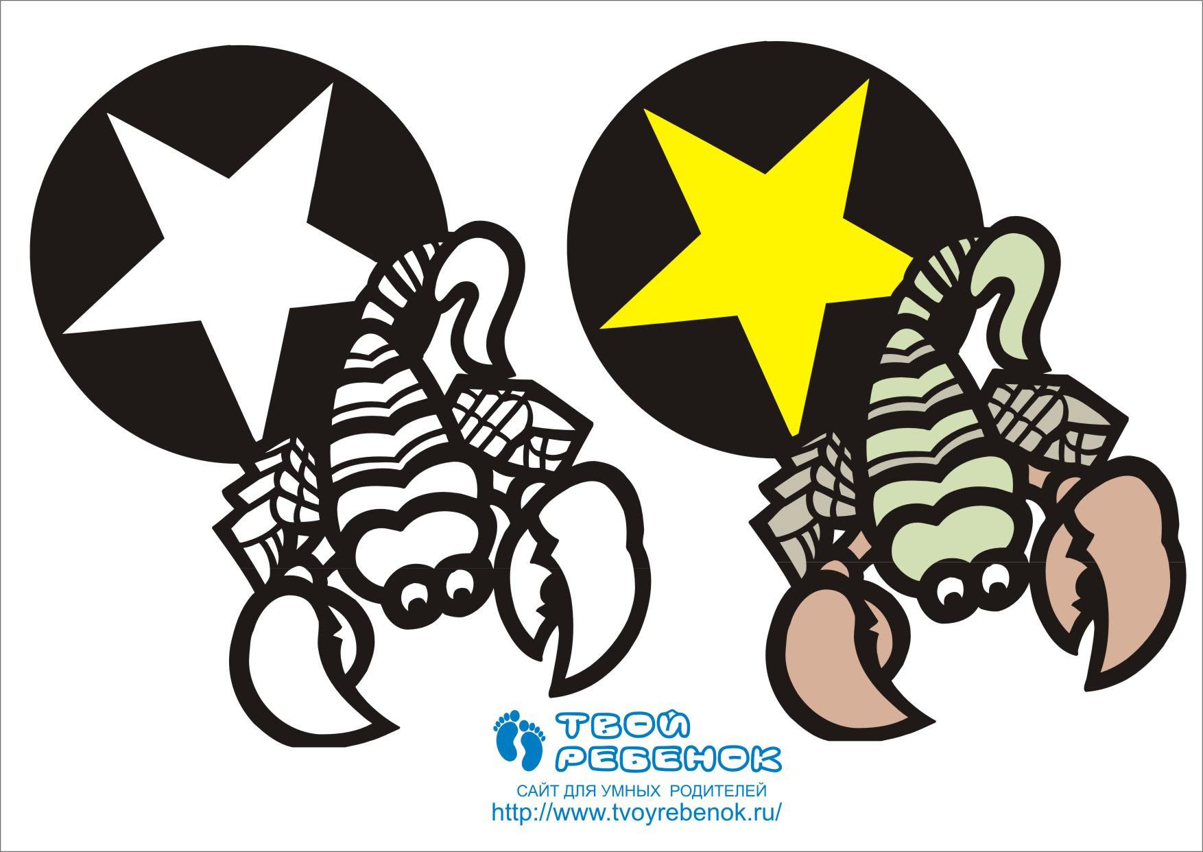 Раскраска Скорпион (знаки зодиака)
