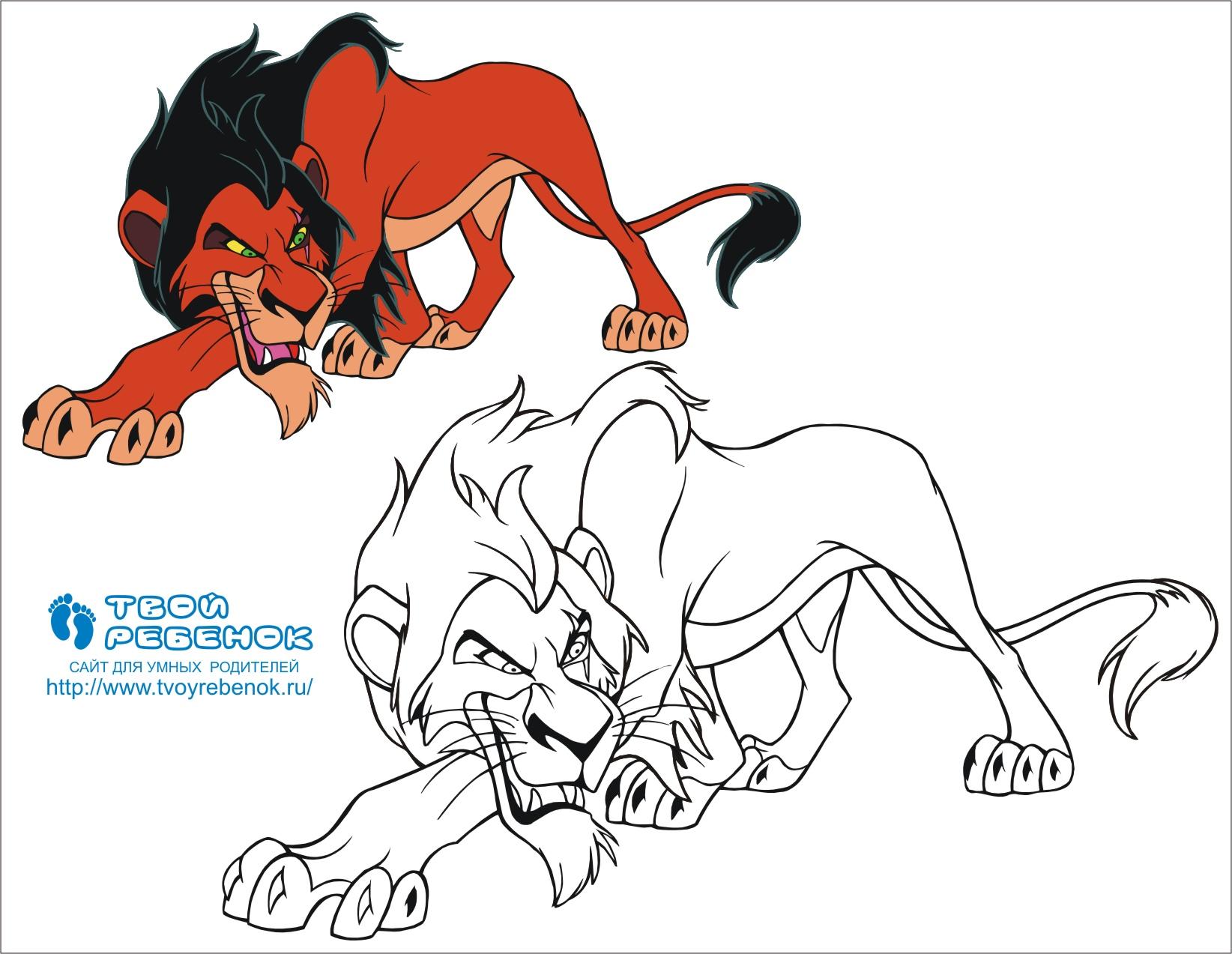 Король лев раскраска шрама