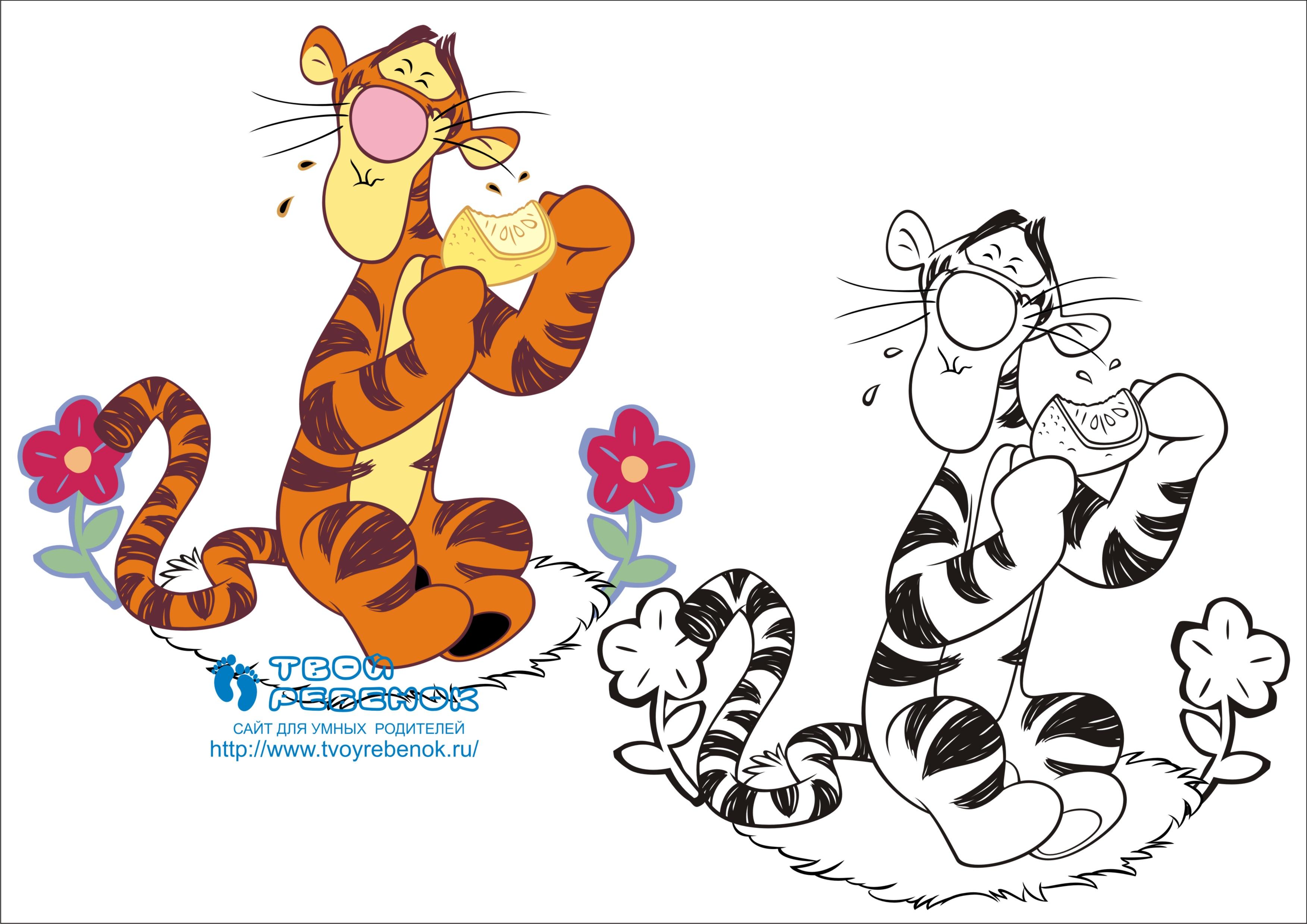 раскраска тигра ест бесплатные раскраски скачать бесплатно