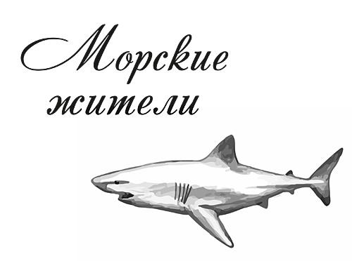 Презентацию на тему морской котик