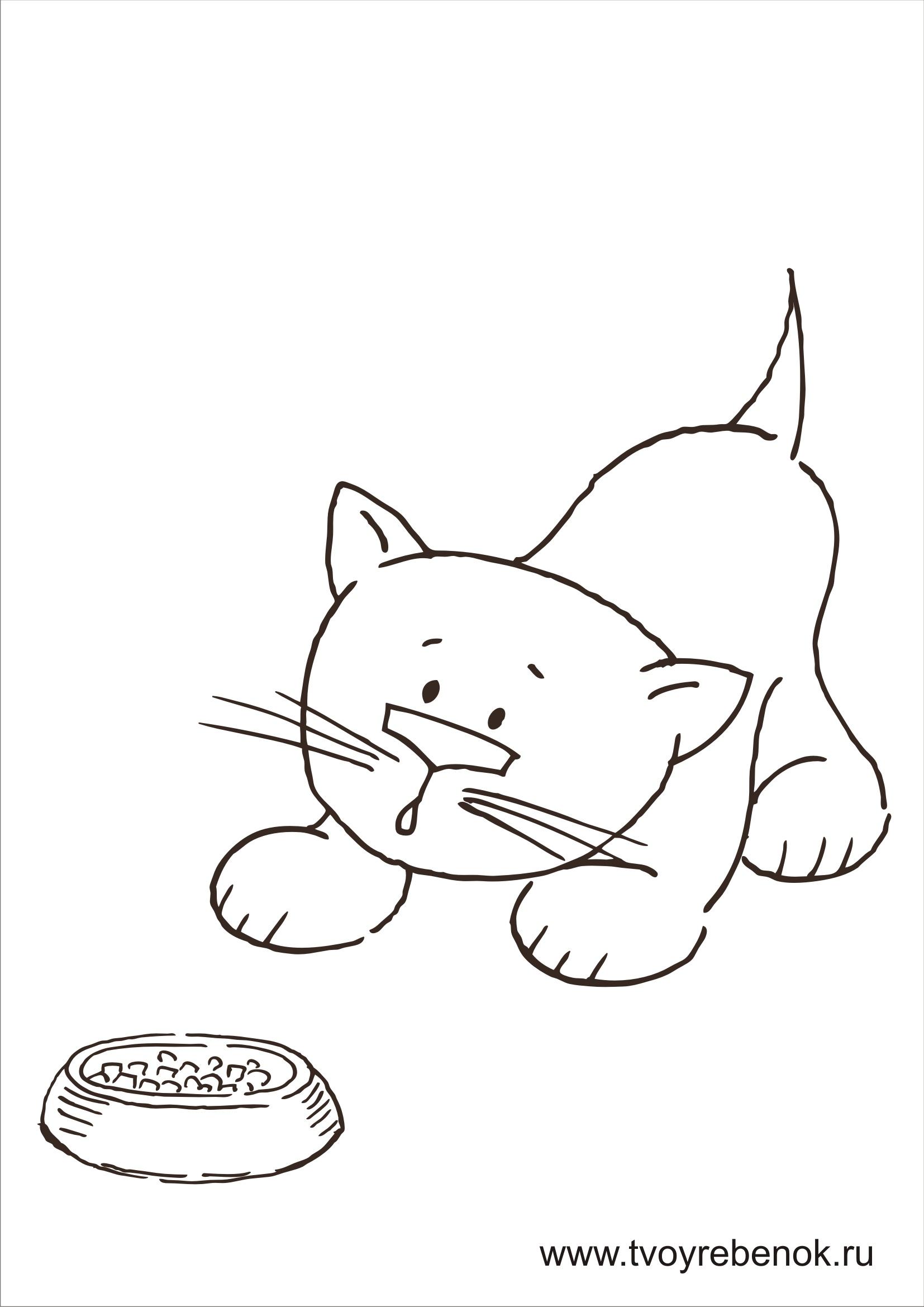 Смотреть раскраски кошки
