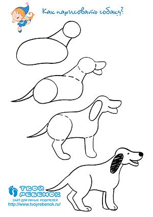 Как рисовать человека поэтапно