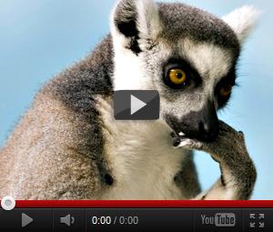 смотреть смешное видео ивангай